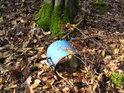 Přirozená součást lesa. Také vás zaujal ten kořen, porostlý mechem?