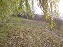 Pohled na jih po hrázi rybníka Šmatlán.