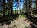 Smrkový lesík je tu hezký, leč do chráněného území nepatří.