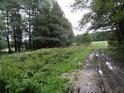 Zablácená cesta na západ od rybníka Zlámanec.