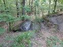 Terénní zlom uprostřed lesa.